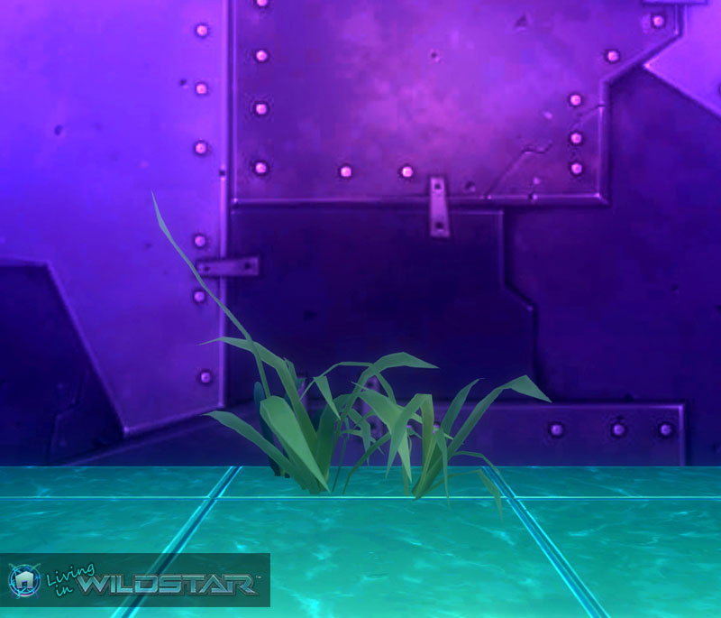 Wildstar Housing - Aquatic Longleaf