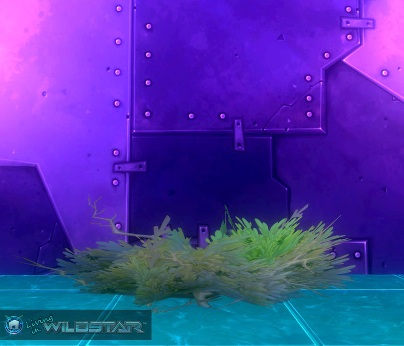 Wildstar Housing - Bramble Bush (Small)