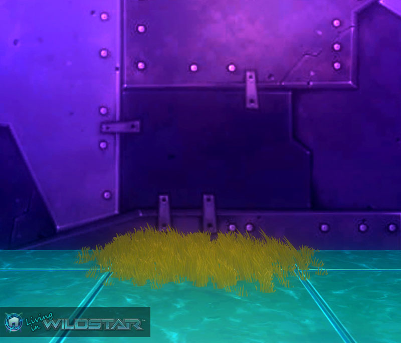 Wildstar Housing - Algoroc Grass