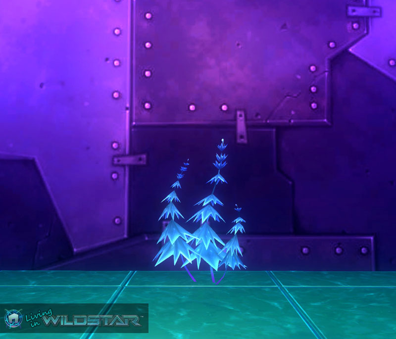 Wildstar Housing - Lush Snowflower