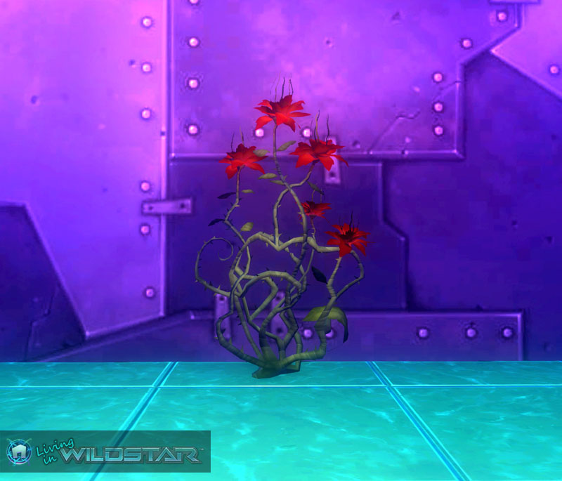Wildstar Housing - Habanerobloom (Thorny)