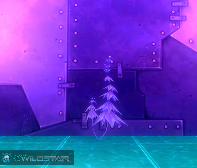 Wildstar Housing - Violet Starflower