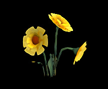 Wildstar Housing - Yellow Flowers