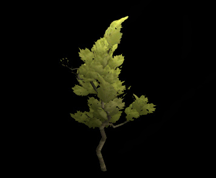 Wildstar Housing - Ginkgo Tree (Bent)